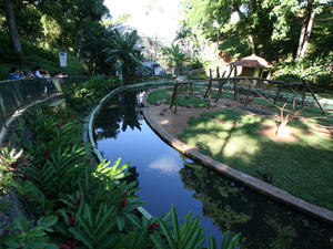 Zoo in Salvador Bahia